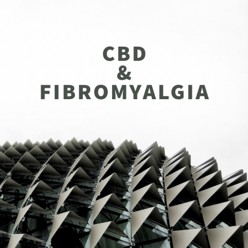 blog on cbd and fibromyalgia
