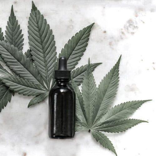 cbd bottle on cannabis leaves