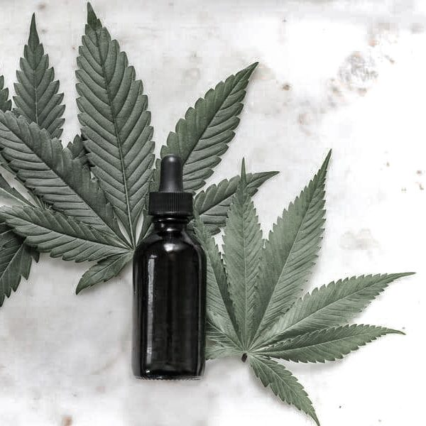 cbd bottle on cannabis leaves